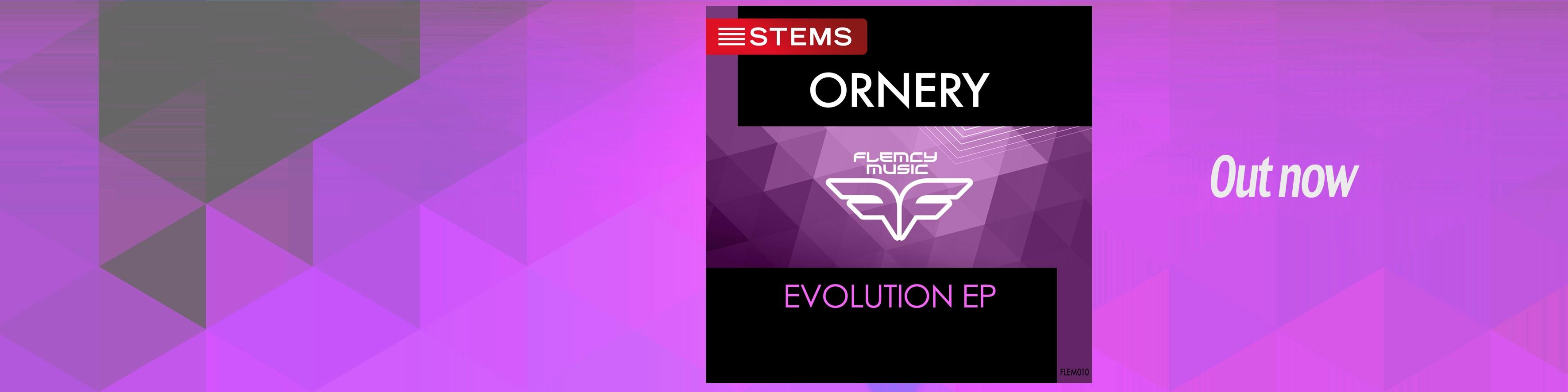 Flemcy slider Ornery – Evolution EP Stems