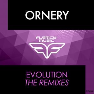 Flemcy Square Ornery - Evolution Remixes